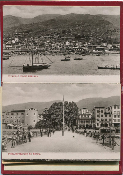 ANON Souvenir of Madeira. - Album No 2
