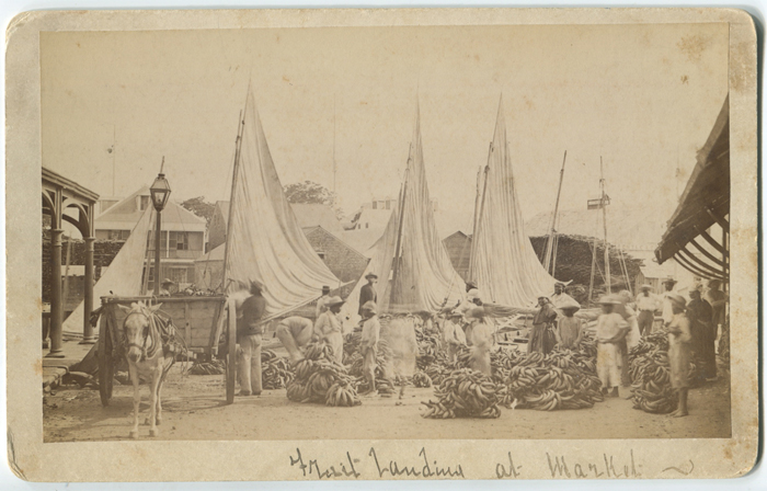 WM. S. AVERY Fruit landing at Market, Belize.