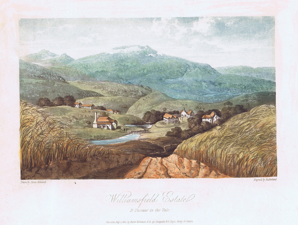 HAKEWILL J. Williamsfield Estate. - St Thomas in the Vale.