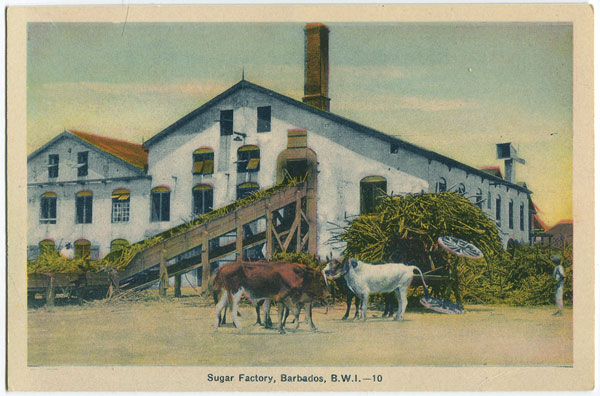 PECO Sugar Factory, Barbados, B.W.I. - 10