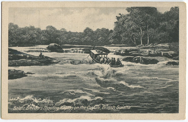 ANON Balata Bleeders shooting rapids on the Cuyuni, British Guiana.