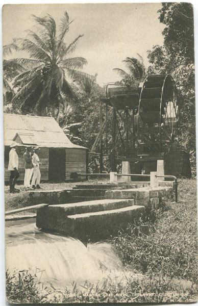 RAPHAEL TUCK A Water Wheel, Martha Brae River, Trelawny. Erected 1799.