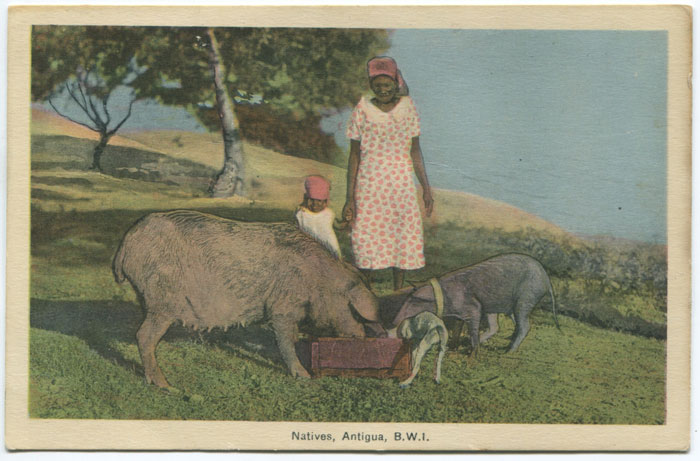 PECO Natives, Antigua, B.W.I.