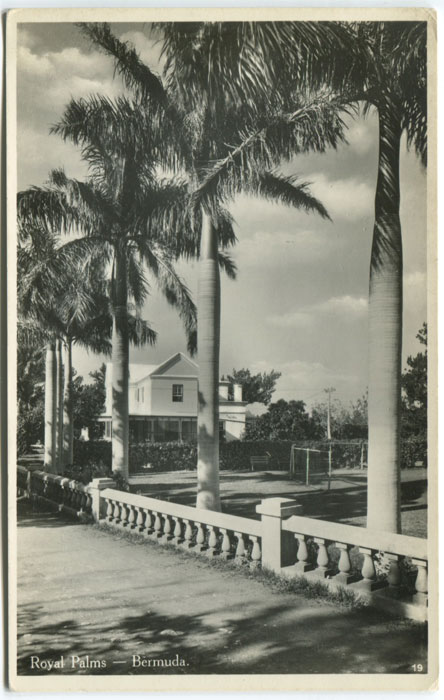WALTER RUTHERFORD and A.J. GORMAN Royal Palms - Bermuda. - No 19