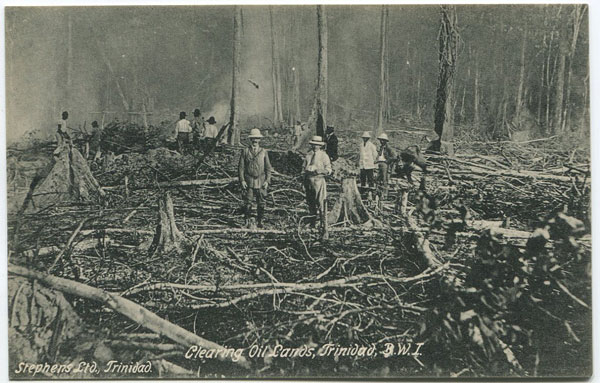 STEPHENS LTD Clearing Oil Lands, Trinidad, B.W.I.