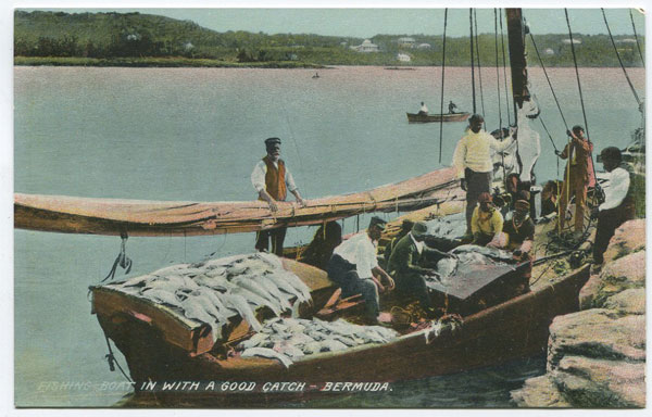 A.P. THOMPSON Fishing boat in with a good catch - Bermuda.
