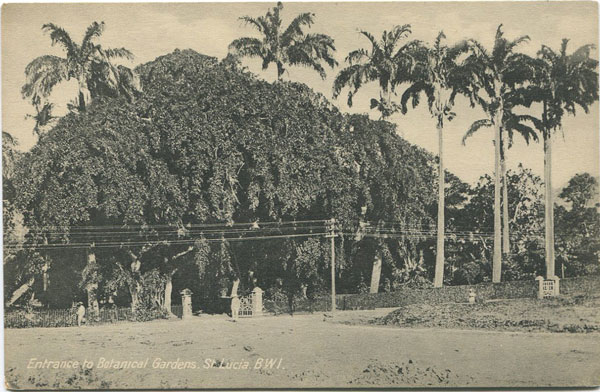 PETER & CO Entrance to Botanical Gardens, St Lucia B.W.I. - 25397