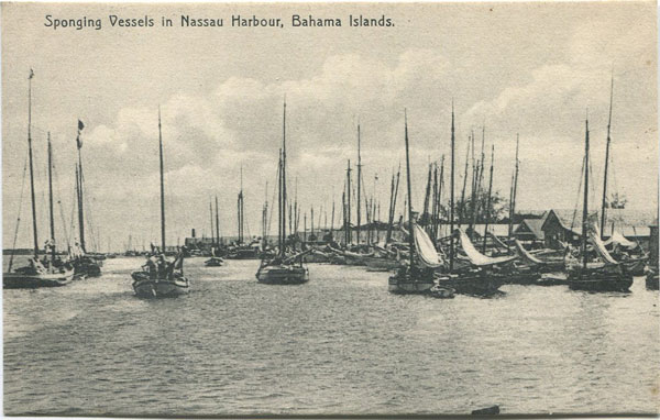 F.S. ARMBRISTER Sponging vessels in Nassau Harbour, Bahamas Islands.