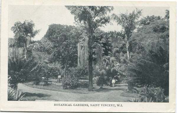 LAWLOR, THOS. & CO Botanical Gardens, Saint Vincent, W.I.