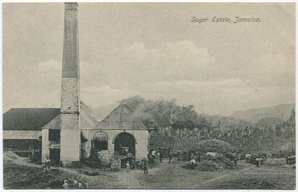 NATHAN & CO LTD Sugar Estate, Jamaica
