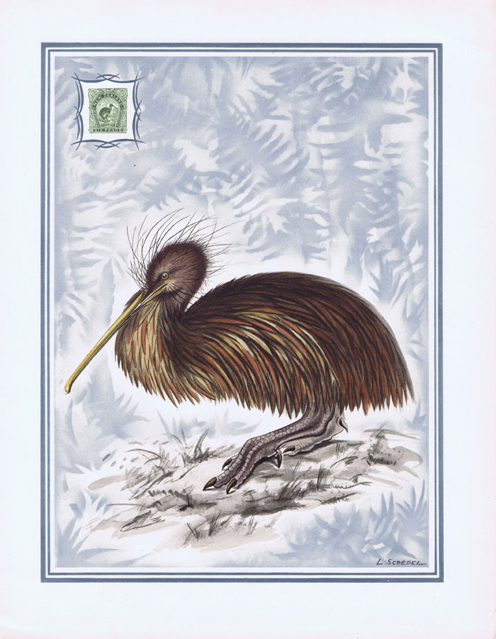 1949 New Zealand Helio-Vaugirard Proof of the 1898 6d Brown Kiwi bird inset into painting of the bird by L. Screpel.