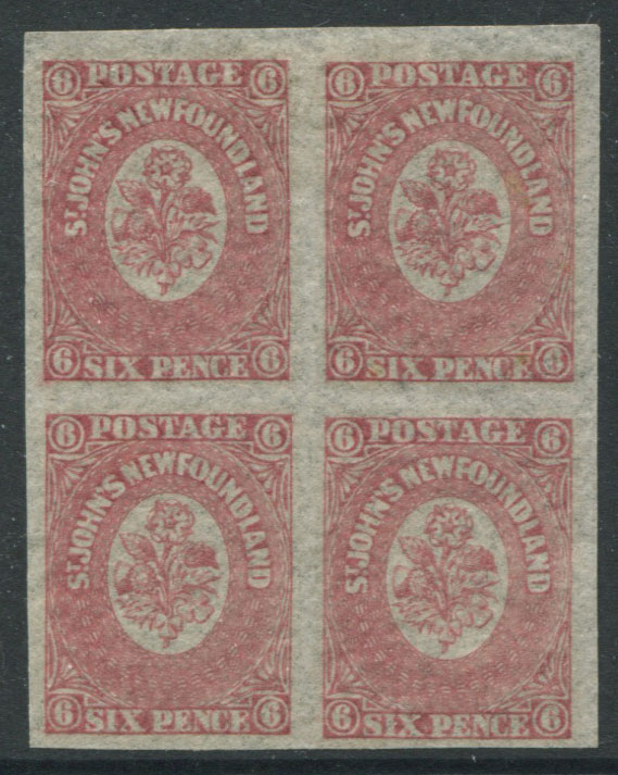 1861-4 Newfoundland 6d rose-lake (SG20)