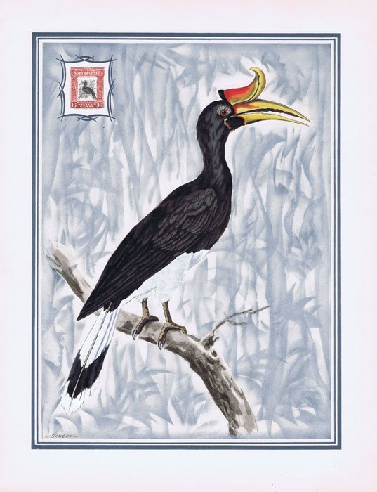 1949 North Borneo Helio-Vaugirard Proof of the 1909-23 16c Rhinoceros Hornbill bird inset into painting of the bird by L. Screpel.