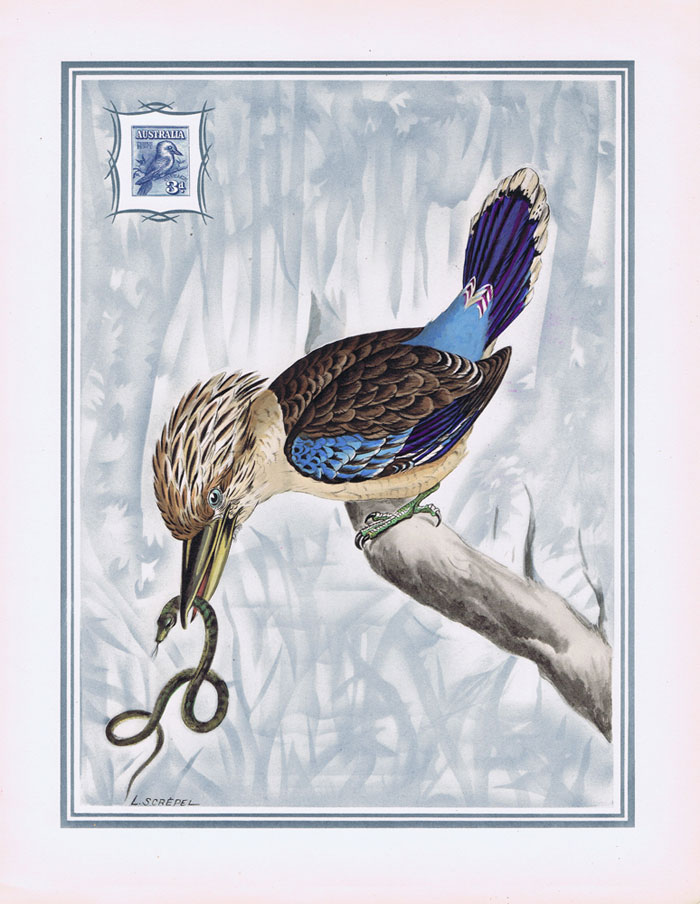 1949 Australia Helio-Vaugirard Proof of the 1928 3d Laughing Kookaburra bird inset into painting of the bird by L. Screpel.
